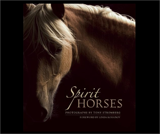 tsp_books-spirithorses